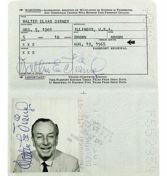 ünlülerin pasaport fotoğrafları (8)